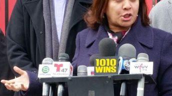 Senadora dominicana NY apoyará programas garantizar mejor salud neoyorkinos