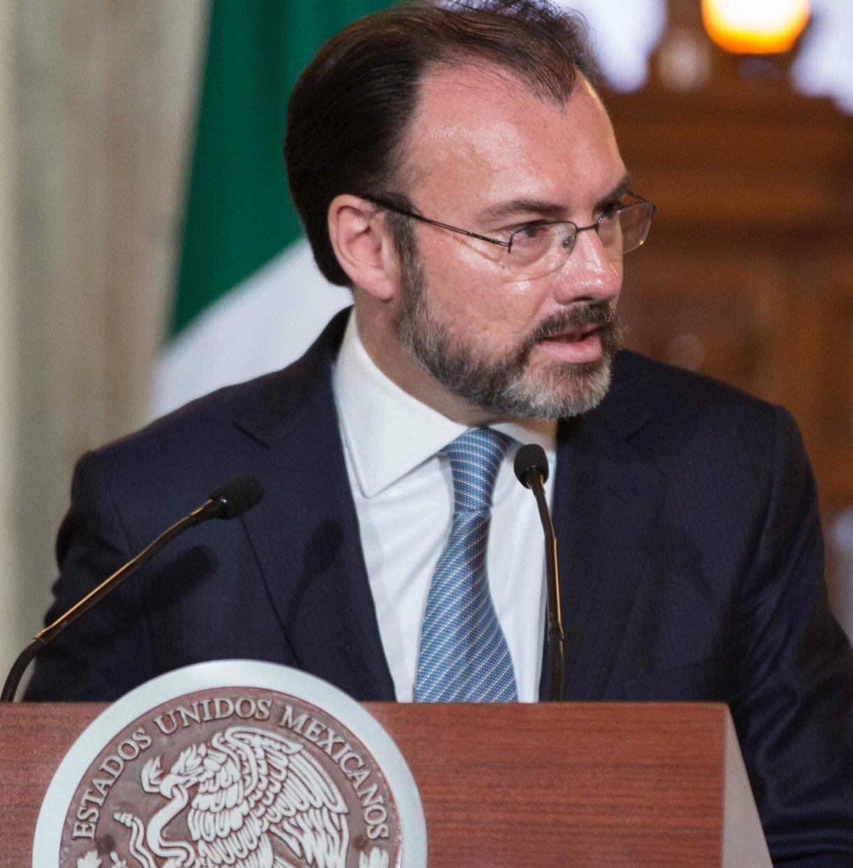 Luis Videgaray Caso  Secretario de relaciones exteriores de Mexico