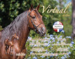 Virtual de Oro1